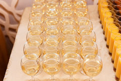 Many glasses of white wine ready for a banquet. Royalty Free Stock Photography