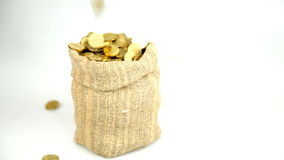 Many gold coins fall in a bag stock footage
