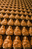 Many golden buddha image. On wood wall royalty free stock photo