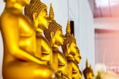 Many golden Buddha images. Many golden Buddha statues in a Thai temple in the capital of Thailand Royalty Free Stock Image