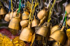 Many golden buddhist bells. Stock Images