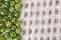 Many gooseberry fruits on gray linen table cloth Stock Image