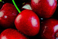 Many goschnoy ripe cherries Royalty Free Stock Photography