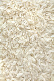 Many Grains of White Rice stock image
