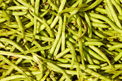 Many green beans Stock Images