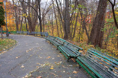 Many green benches in a park Stock Photo