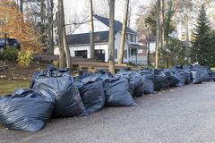 Many green garbage bags at curb Royalty Free Stock Photo
