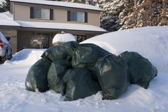 Many green garbage bags at curb winter snow stock photo