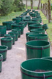 Many green wooden barrels Stock Photo