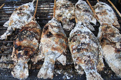 Many grilled snakehead fish Royalty Free Stock Photo