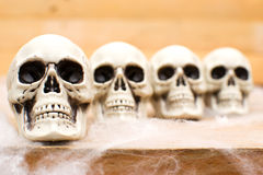 Many Halloween skulls on table Royalty Free Stock Image