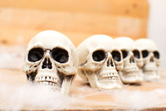 Many Halloween skulls on table Stock Image