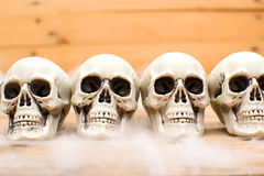 Many Halloween skulls Stock Photo