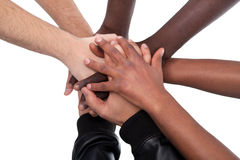 Many Hands Lying On Top Of Each Other. On White Background royalty free stock images