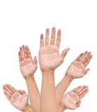 Many Hands raise high up. On white background stock photo
