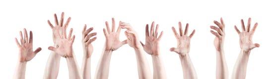Many hands raised up Stock Photo