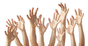 Many Hands Reaching Up. As if asking a question isolated on white royalty free stock images