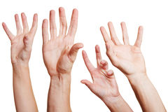 Many hands reaching out Royalty Free Stock Photos