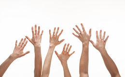 Many hands reaching out in the air. White background, copy space stock images