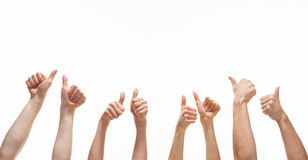 Many hands showing thumb up. Signs on white background stock images