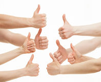 Many hands showing thumb up signs. On white background royalty free stock image