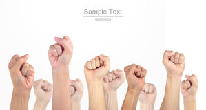 Many hands thumbs up isolated white background Stock Photo