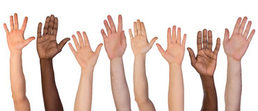 Many hands up isolated on white Stock Photography