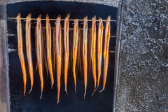 Many hanging eels are being smoked Stock Image
