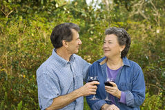 Many Happy Anniversaries. Happy retired couple toasting to many more happy anniversaries stock photo