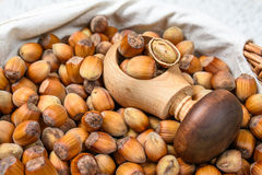 Many hazel nuts and cracker in wicker basket Stock Images
