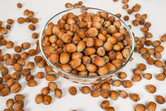 Many hazel nuts in glass bowl Stock Images