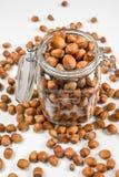 Many hazel nuts in glass bowl Stock Photos