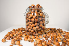 Many hazel nuts in glass bowl Royalty Free Stock Photography