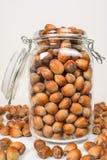 Many hazel nuts in glass bowl Royalty Free Stock Photo