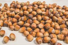 Many hazel nuts Stock Photography