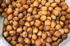 Many hazel nuts in wicker basket Royalty Free Stock Image