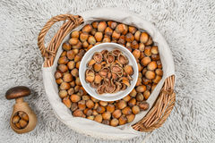 Many hazel nuts in wicker basket and cracker Royalty Free Stock Image