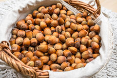 Many hazel nuts in wicker basket Stock Photos