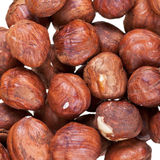 Many hazelnuts close up Stock Photo