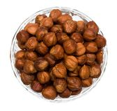 Many hazelnuts isolated Stock Images