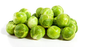 Many healthy sprouts Royalty Free Stock Photography
