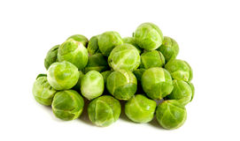Many Healthy Sprouts Royalty Free Stock Images