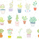 Many herbs kitchen seamless pattern - nice design Stock Images