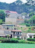 Many houses on the hill in Dalat, Vietnam Stock Photography