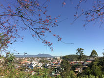 Many houses located in Dalat, Vietnam Stock Images