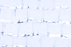 Many ice cubes Stock Images