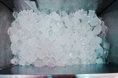 Many ice cubes on fridge at the bar Royalty Free Stock Images