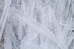 Many ice pieces. Large ice floe has broken up into innumerable small pieces of ice stock photos