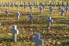 Many identical gray crosses in polish military cemetery. autumn and sunset of life. struggle for congregation and independence of royalty free stock photo