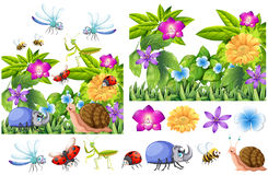 Many insects in flower garden. Illustration Stock Photography